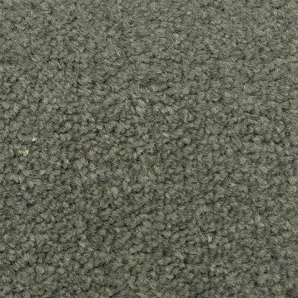 Pewter Coloured Carpet